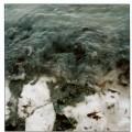 algenwelle